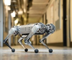 Cheetah, the robot of MIT, knows how to make somersaults