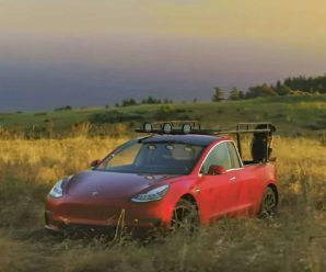Woman turned a Tesla Model 3 into a pickup