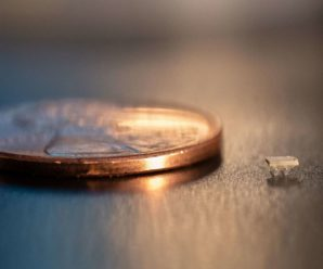 Mini-robots, smaller than Ants