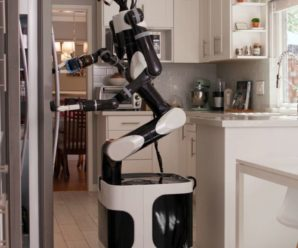 Toyota develops domestic robots with progressive intelligence