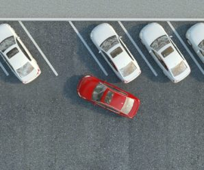 Science shifted: how to park a car with 12 Neurons