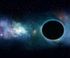 Light on the growth of black holes